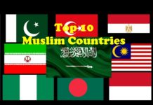 top 10 muslim countries