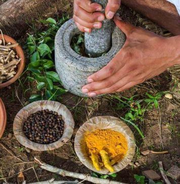 top 10 ayurvedic product brands