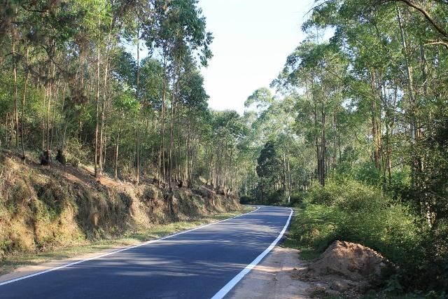 Munnar-Udumalpet Road, NH17